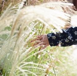 가을에 퐁당빠진 화담숲_사랑에 빠진 우리의 이야기