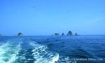 부산의 상징-오륙도(五六島)