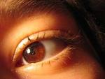 눈의 신경계통인 망막의 기능과 백내장 증상