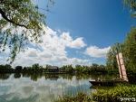 부여 궁남지 연꽃 피는 풍경