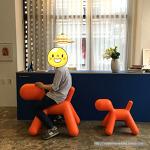 마지스 퍼피(MAGIS Puppy) 의자 in 원오디너리맨션