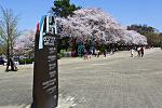 서울대공원 산책