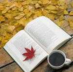 도서정가제 시행이유 도서정가제 중고책 도서정가제란?