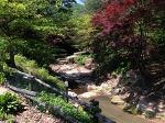 서울에서 가장 가까운 수목원 '산들소리수목원' (남양주)