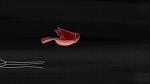 MON OEIL / Le son dans le film d'animation