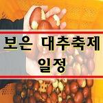 보은대추축제 2017 대추축제일정 <초대가수 공연>