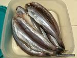 깜짝 놀란 스페인 마트 생선 코너의 새로운 법