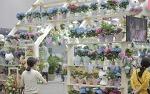 대구꽃박람회와 함께 6월에 가볼만한곳인 대구음식관광박람회