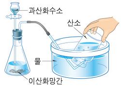 과산화수소의 촉매 분해 실험