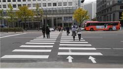 서울시 중구 태평로에 횡단보도 설치가 완료되었습니다