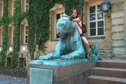 세계 최고의 대학중의 하나인 미국 뉴저지(New Jersey) 주의 프린스턴대학교(Princeton University)