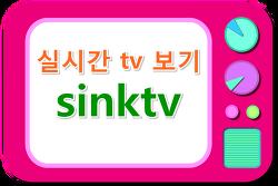 실시간 TV 보기, SINK TV