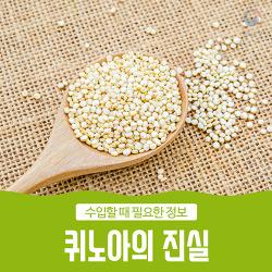 퀴노아(Quinoa)의 진실