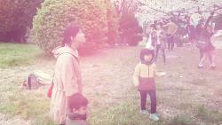 2016.04.02 온천천 벚꽃놀이