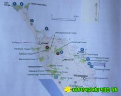 뉴질랜드 길 위의 생활기 754-Forest Pools포레스트 풀스에서 무료 캠핑을.