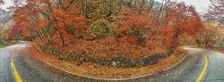 11월 비오는 날 호명산
