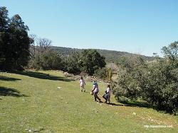 스페인 고산에 찾아온 평화로운 봄