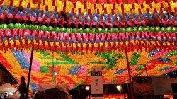 불기 2558년 부처님 오신날 세월호 참사 희생자들을 위한 축원 의식을 한다고 하네요
