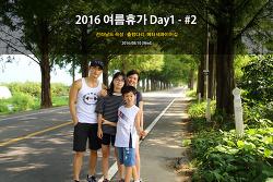 곡성 여행 - 출렁다리, 메타세콰이어길 (2016.08.10)
