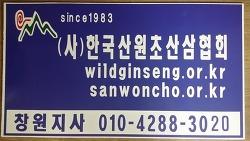 한국산원초산삼협회 창원지사 활동 사진