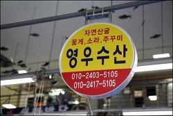 서천특화시장 영우수산에서 갯가재 (쏙) 구입