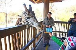 동물 친구들을 눈 앞에서! 에버랜드 '동물원 생생체험교실'