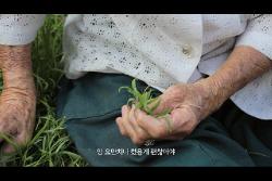 [09.00] 할머니의 먼 집_예고편