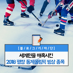세계인을 매혹시킨 2018 평창 동계올림픽 빙상 종목