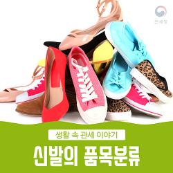 신발의 품목분류