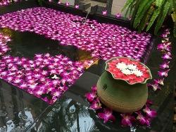 [푸켓 허니문] 반얀트리 풀빌라 룸타입 / Phuket Banyan Tree Pool Villa Room Type