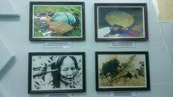 학살의 현장, 역사를 되짚는 길에 대한 이야기. 『베트남 전쟁의 유령들』 관련 기사
