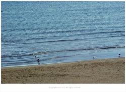 포항 일출명소 영일대해수욕장 한적한 겨울바닷가 풍경