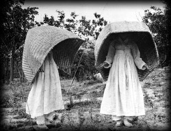 여인들의 가리개