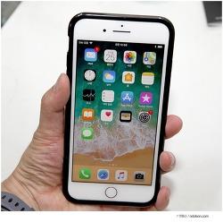 아이폰8 테크21 케이스, 내부 충격보호까지 되는 아이폰8플러스 범퍼케이스