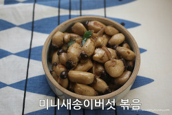 미니새송이 버섯 볶음 간단한 양념비율