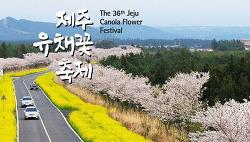 2018 제주유채꽃축제 기간과 장소