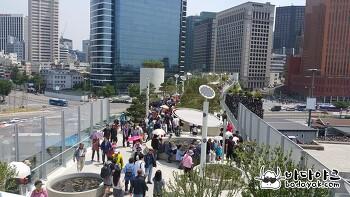 서울로 7017 도심 산책로가 된 서울역 고가 공원 베리 굳드!!