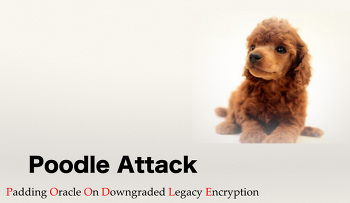 Poodle [padding oracle on downgraded legacy encryption]