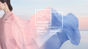 팬톤 (PANTONE) 이 선정한 2016 트렌드 컬러