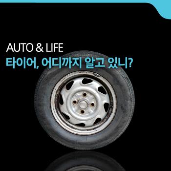 타이어, 시련이 남긴 열매 [AUTO & LIFE]