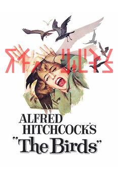 새 (The Birds,1963, Alfred Hitchcock) (Film -> Short Novel) (A4: 27 pages)