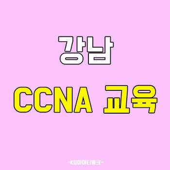 강남CCNA교육 학원 평일,주말반으로!