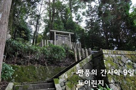 단풍의 간사이 - 9일 요시노1 (뇨이린지如意輪寺)