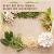 봄 향기 물씬 풍기는 제철음식, 봄나물의 매력 속에 빠져볼까요?