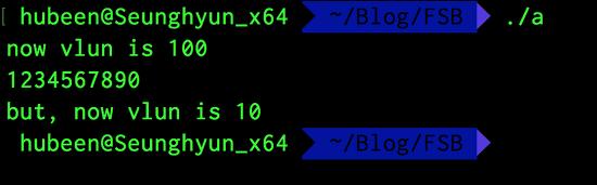 Format String Bug (FSB)