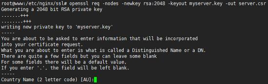 Nginx기반 SSL 보안인증서 설치 방법(AlphaSSL)