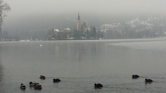동유럽가족여행(14)- 슬로베니아 블레드. 오스트리아 짤츠부르크