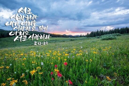 [천안신천지] 평화의 바람은 이곳에서부터...