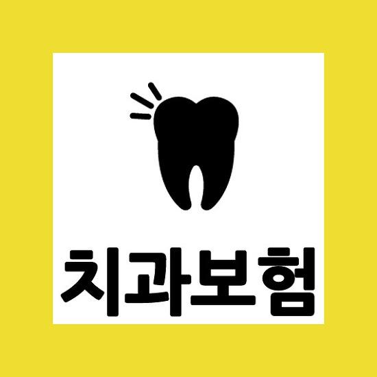 치과 레진 보험 확인사항