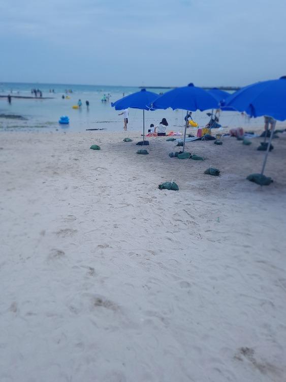 7월 제주여행 넘 예쁜 바다색 협재해수욕장